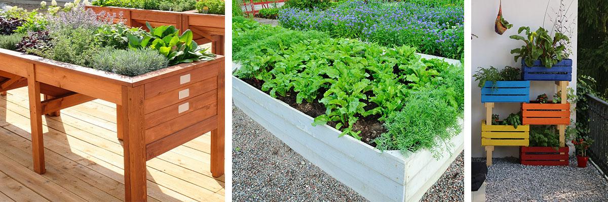 De-eetbare-tuin-koopmansverf